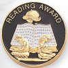 Reading Award Lapel Pin Scholastic Subjects
