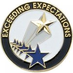 Exceeding Expectations Lapel Pin Corporate Lapel Pins